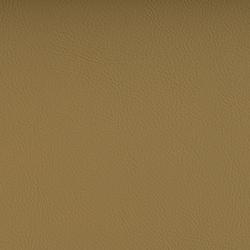 Vyva Fabrics > Valencia 107-1001 champagne