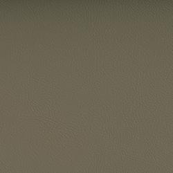 Vyva Fabrics > Valencia 107-4002 laurel