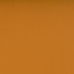 Vyva Fabrics > Valencia 107-6013 melone