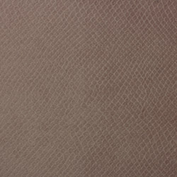 Vyva Fabrics > Glade Stamp 3458 Blush