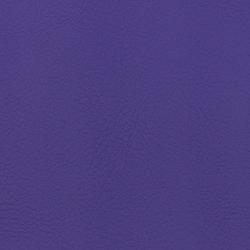 Vyva Fabrics > Valencia 107-2118 ultra-violet