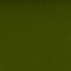 Vyva Fabrics > Valencia 107-5001 olive