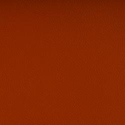 Vyva Fabrics > Valencia 107-6003 nectarine