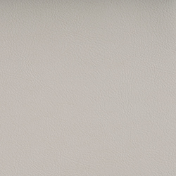 Vyva Fabrics > Valencia 107-8020 pearlessence metallic