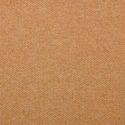 Vyva Fabrics > Pukka 5018 Tangerine